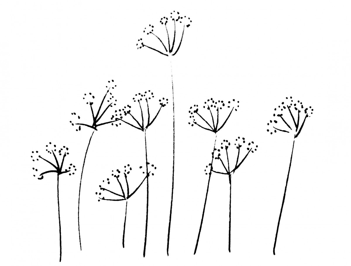 bloemekeszwart